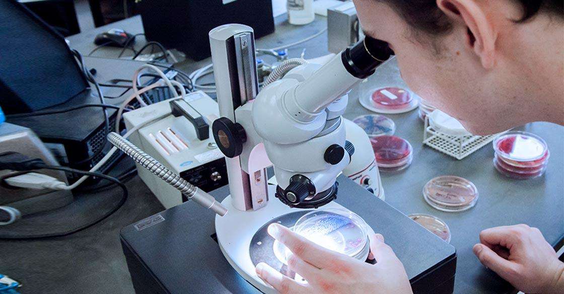 A research assistant examines DNA through microscope
